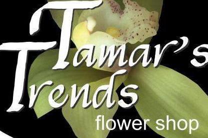 Tamar's Trends